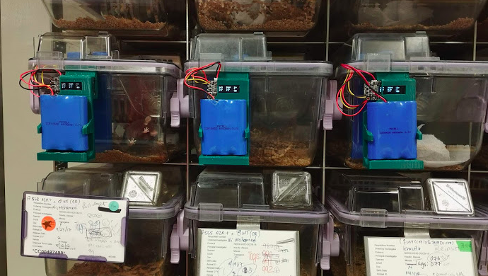 Automated mouse homecage two-bottle choice test v2 | Hackaday io