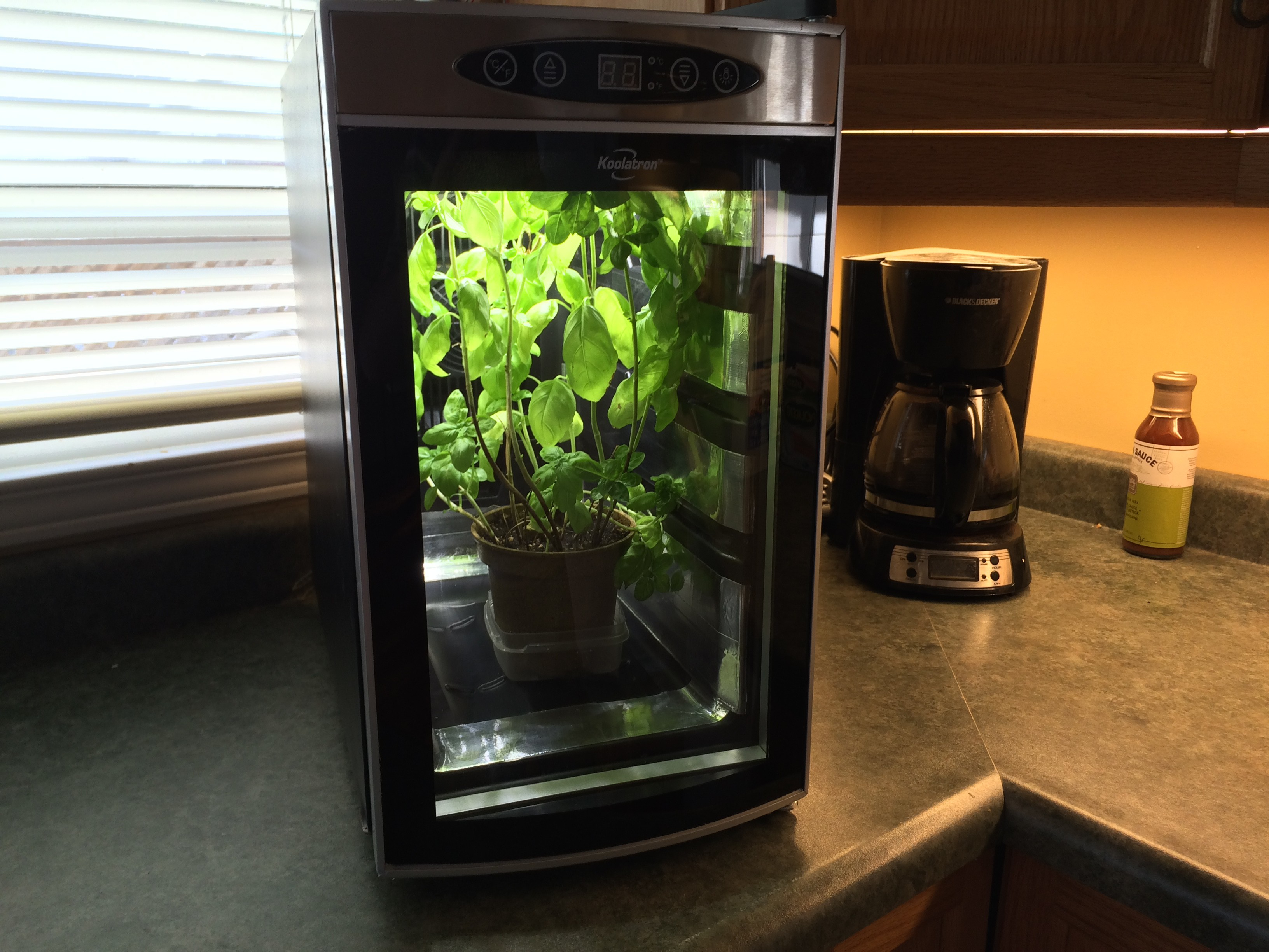 Indoor Kitchen Gardens Urban Kitchen Garden O Hackadayio