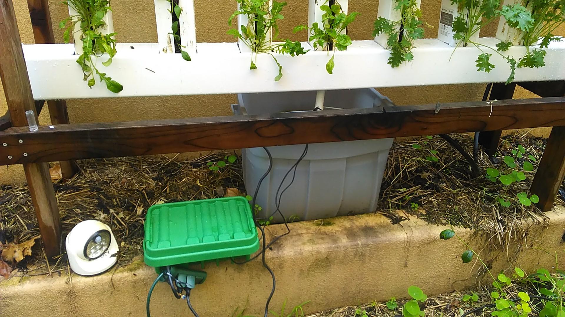 PH & Temperature Sensor to monitoring Hydroponics   Hackaday io