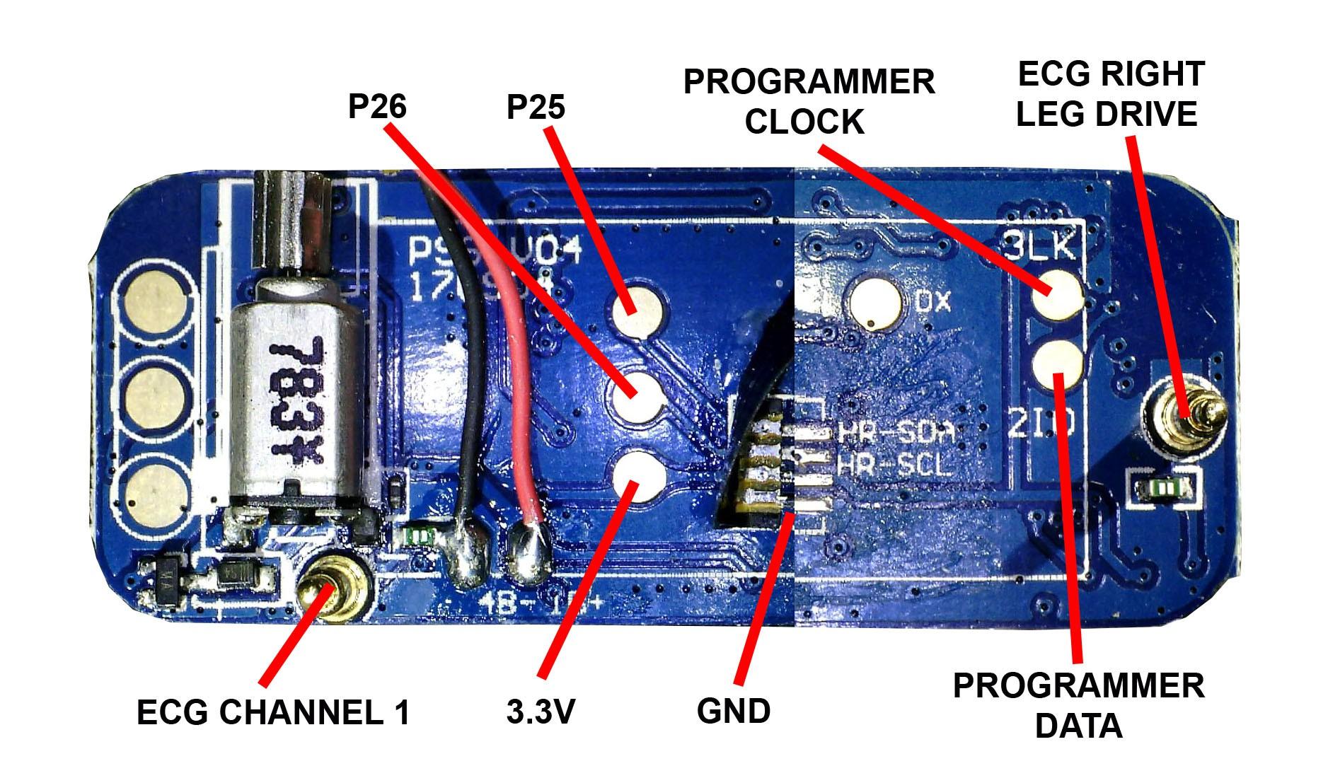 Hacking a $35 ECG nRF52 Fitness Tracker into EEG | Details