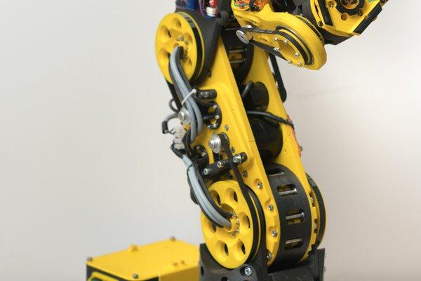 Atlas - 6DOF 3D printed universal robot