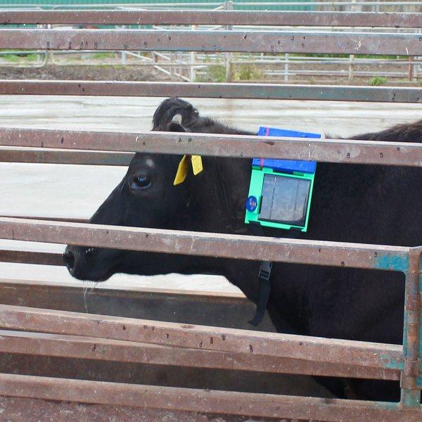 OpenFence - Digital Livestock Fencing | Hackaday io