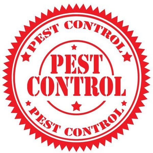 newcastle-pest-controller