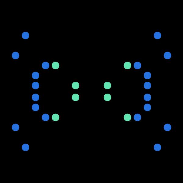 sophi-kravitz