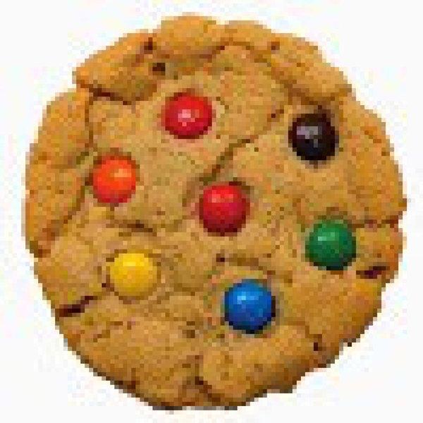 cookiecoder15