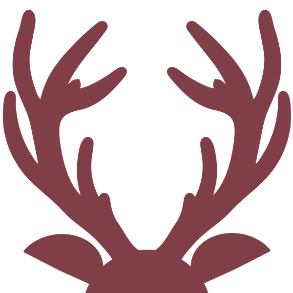 space-buck