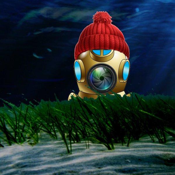 live-aquatic-bc
