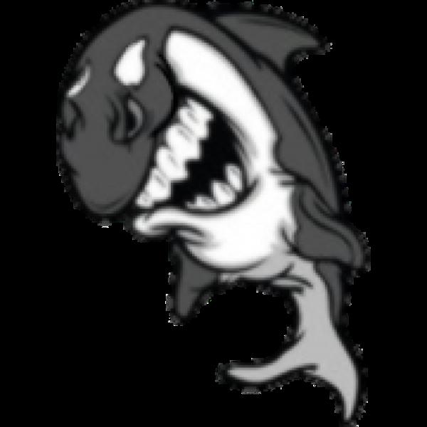 minerbigwhale