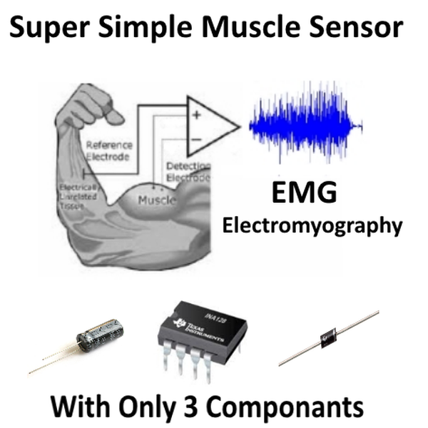 Super Simple Muscle (EMG) Sensor | Hackaday io